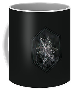 Snowflake Photo - January 18 2013 Grey Colors Coffee Mug