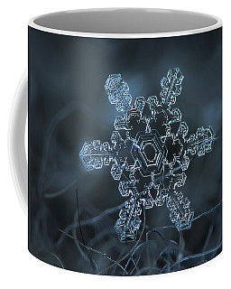 Snowflake Photo - Slight Asymmetry Coffee Mug