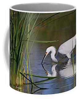 Snowy Egret Coffee Mug by Bob Zeller