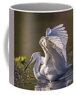 Snowy Egret Hunting - Egretta Thula Coffee Mug