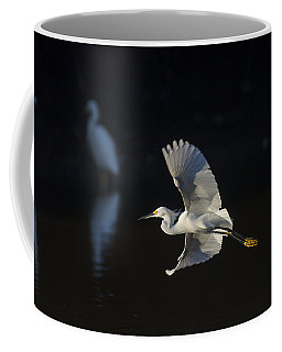 Snowy Egret In Flight In The Morning Light Coffee Mug