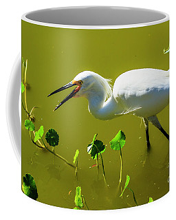 Snowy Egret In Florida Coffee Mug