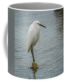 Snowy Egret Coffee Mug by Jane Luxton