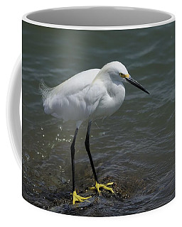 Snowy Egret On Rock Coffee Mug