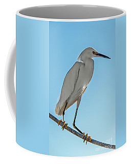 Coffee Mug featuring the photograph Snowy Egret by Robert Bales