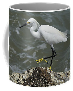 Snowy Egret Rock Walking Coffee Mug