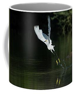 Snowy Egrets 080917-4290-1cr Coffee Mug