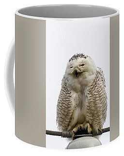 Coffee Mug featuring the photograph Snowy Impersonates Yoda by Michael Hubley