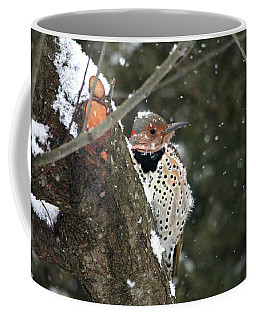 Snowy Northern Flicker Coffee Mug by Trina Ansel