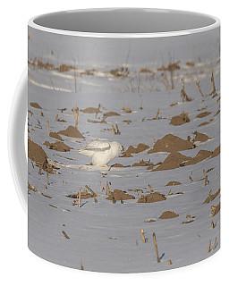 Snowy Owl 2016-10 Coffee Mug