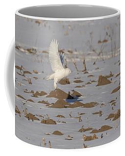 Snowy Owl 2016-12 Coffee Mug