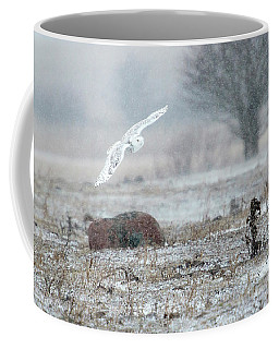 Coffee Mug featuring the photograph Snowy Owl In Flight 3 by Gary Hall
