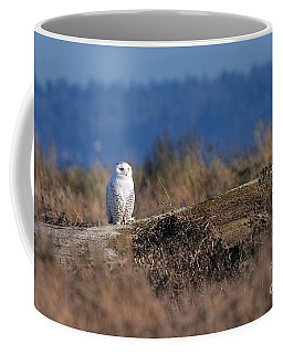 Coffee Mug featuring the photograph Snowy Owl On Log by Sharon Talson