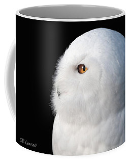 Snowy Owl Portrait Coffee Mug