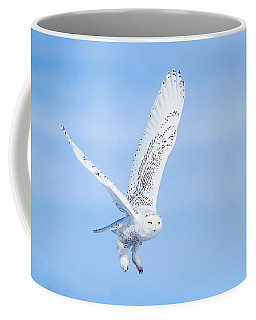 Coffee Mug featuring the photograph Snowy Owls Soaring by Rikk Flohr
