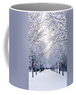 Snowy Pathway Coffee Mug by Marius Sipa
