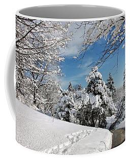 Coffee Mug featuring the photograph Snowy Wonderland  by Elaine Manley