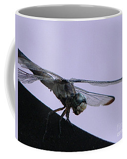 So Many Bugs So Little Time Coffee Mug