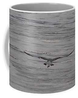 Coffee Mug featuring the photograph Soaring Gull by  Newwwman