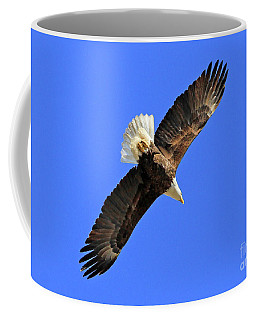 Soaring Into The Blue  Coffee Mug