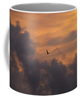 Coffee Mug featuring the photograph Soaring Into The Sunset by Richard Bryce and Family