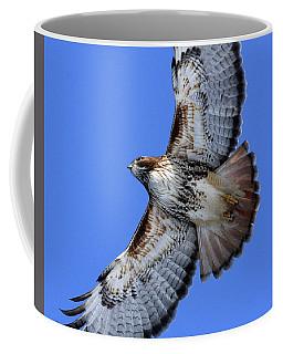 Soaring Red-tail Coffee Mug