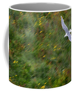 Coffee Mug featuring the photograph Soaring Seagull by Joe Bonita