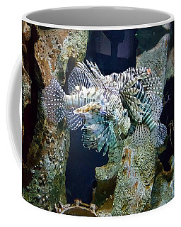 Socializing Fish Coffee Mug
