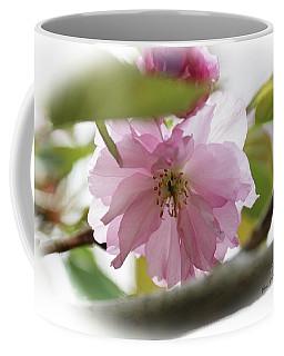 Soft And Gentle  Coffee Mug