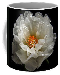 Coffee Mug featuring the photograph Soft And Pure by Judy Vincent