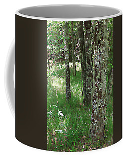 Coffee Mug featuring the photograph Soft Trees by Shari Jardina