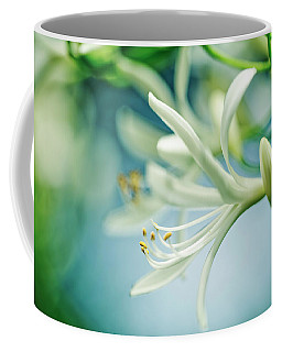 Soft White Coffee Mug