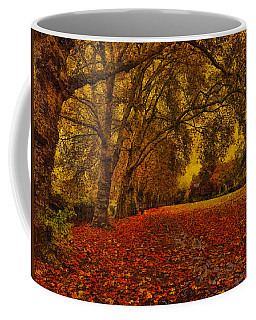Softly Falls The Evening  Light Coffee Mug