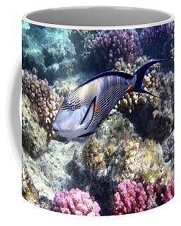 Sohal Surgeonfish 5 Coffee Mug