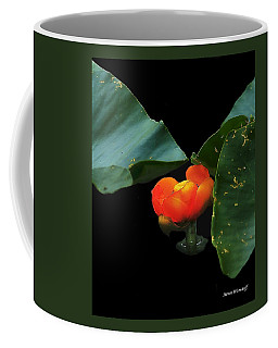 Solitary Fulfillment Coffee Mug
