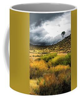 Solitary Pine Coffee Mug