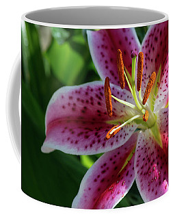 Solitary Splendor Coffee Mug