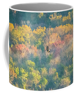 Coffee Mug featuring the photograph Solo Eagle With Fall Colors by Jeff at JSJ Photography