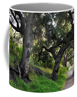 Solstice Canyon Live Oak Trail Coffee Mug
