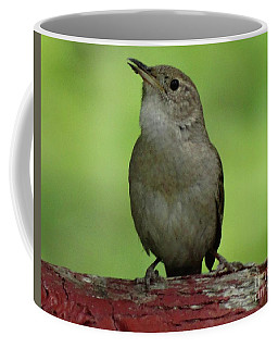 Song Bird Coffee Mug