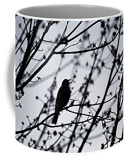 Coffee Mug featuring the photograph Song Bird Silhouette by Terry DeLuco