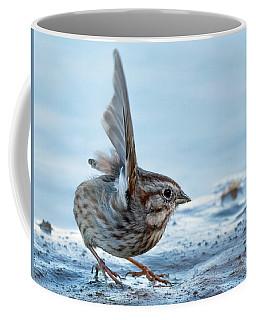 Song Sparrow 3426-112217-1cr Coffee Mug