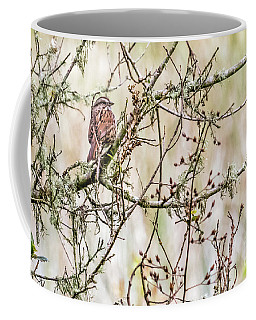 Coffee Mug featuring the photograph Songster by Kate Brown