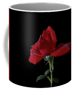 Coffee Mug featuring the photograph Sonja by Mark Blauhoefer