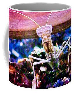 Sonoran Desert Ground Mantis Coffee Mug