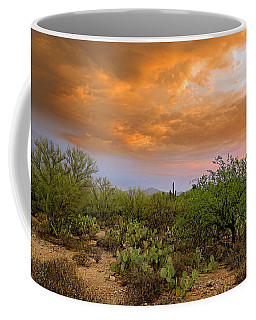 Coffee Mug featuring the photograph Sonoran Desert H11 by Mark Myhaver