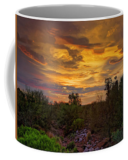 Coffee Mug featuring the photograph Sonoran Sonata H01 by Mark Myhaver