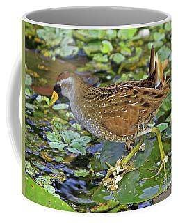 Sora On The Pads Coffee Mug
