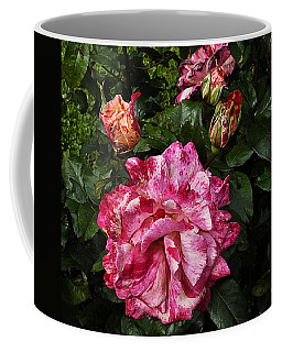 Coffee Mug featuring the photograph Sorbet by Karo Evans