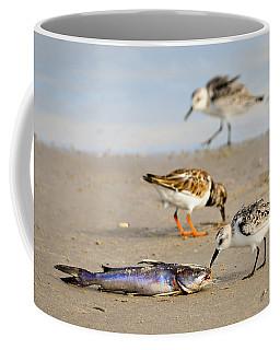 Sorry Buddy Coffee Mug by Debra Martz